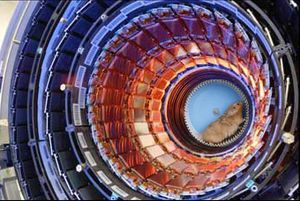 Hadron_collider_interior